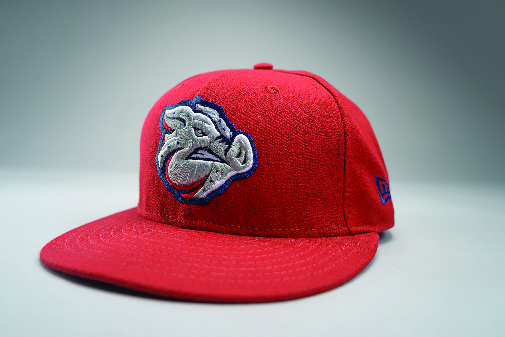 Iron Pigs Red Hat
